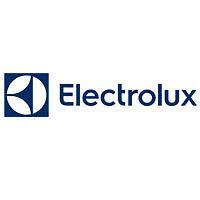 Газовый котел Electrolux